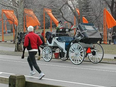 The Gates and carriage and jogger in Central Park
